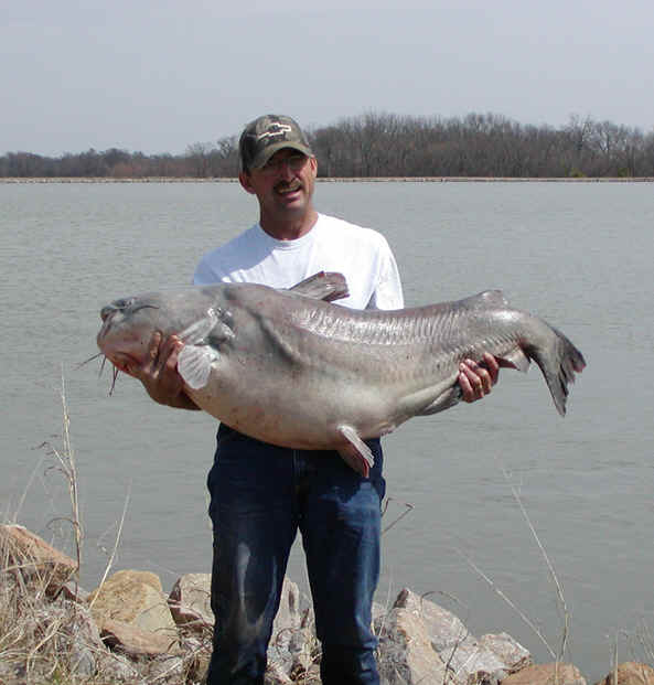 87 pound blue catfish breaks state record for Fishing in oklahoma